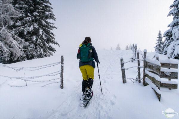 Schneeschuhwandern am Plankogel