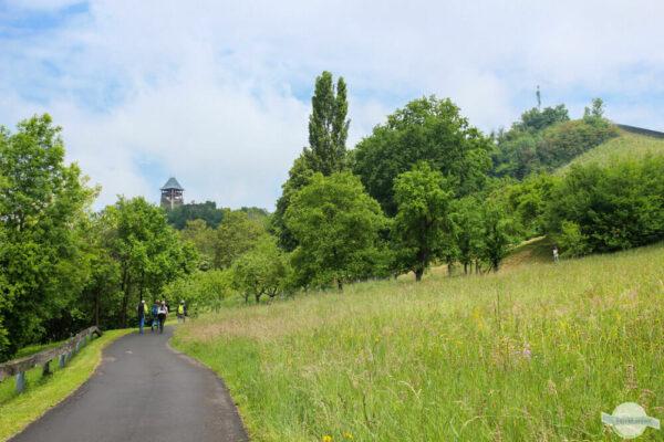 Themenwanderwege in Österreich