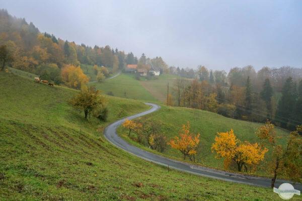 Südsteiermark im November