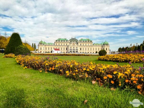 Herbst beim Schloss Belvedere