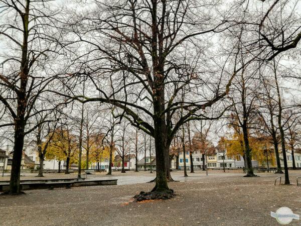 Park im Spätherbst in Zürich