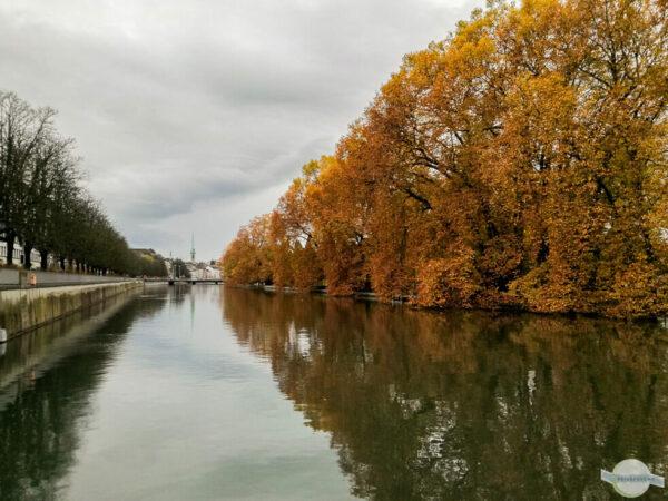 Herbst an der Limmat